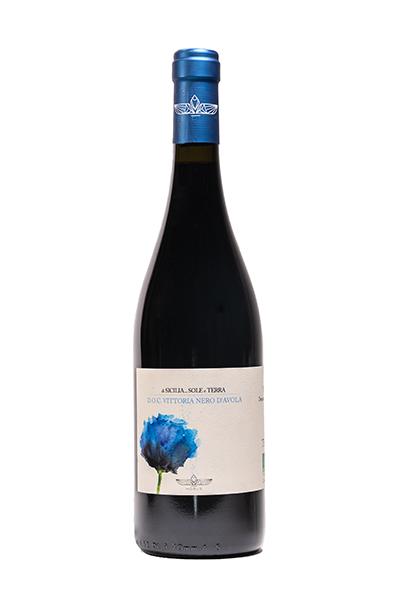 cantina-horus-sole-terra-vino-nero-400×600
